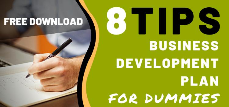 Business Development Plan for Dummies